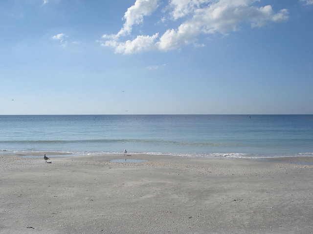 Indian Rocks Beach Condo Vacation Rental