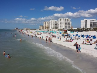 Clearwater Beach Pet Friendly VRBO Rentals